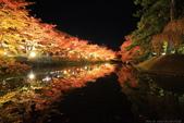 日本北關東東北行-8弘前城-櫻花紅葉園區驚豔楓紅.....:A81Q0697.JPG