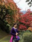 日本四國人文藝術+楓紅深度之旅-金刀比羅宮楓紅盛開秘境 53-33:IMG_6452.JPG