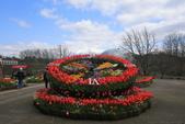 日本關西賞櫻深度之旅-鳥取花迴廊42-8:A81Q1617.JPG