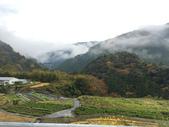 日本四國人文藝術+楓紅深度之旅-別府峽楓葉散策53-23:IMG_5395.JPG