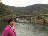 日本四國人文藝術+楓紅深度之旅-栗林公園 53-8:IMG_4206.JPG