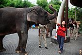 15-5-峇里島-Safari Marine Park野生動物園:IMG_1209峇里島-Safari Marine Park野生動物園.jpg