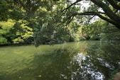 日本四國人文藝術+楓紅深度之旅-栗林公園 53-8:A81Q9722.JPG