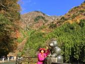 日本四國人文藝術+楓紅深度之旅-別府峽楓葉散策53-23:IMG_5505.JPG