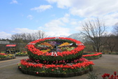 日本關西賞櫻深度之旅-鳥取花迴廊42-8:A81Q1633.JPG