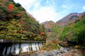 日本四國人文藝術+楓紅深度之旅-別府峽楓葉散策53-23:A81Q0020.JPG