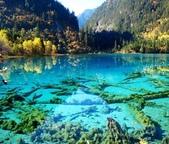 世界上最迷人的50個地方,你去過嗎?來看看!:中國四川省九寨溝的五花海.jpg