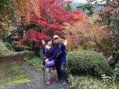日本四國人文藝術+楓紅深度之旅-金刀比羅宮楓紅盛開秘境 53-33:IMG_6432.JPG