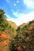 日本四國人文藝術+楓紅深度之旅-別府峽楓葉散策53-23:A81Q0040.JPG