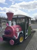 日本關西賞櫻深度之旅-鳥取花迴廊42-8:IMG_2247.JPG