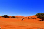 納米比亞紅色沙漠-1200公尺世界最高的-就在死亡谷上方:IMG_6984.jpg