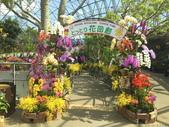 日本關西賞櫻深度之旅-鳥取花迴廊42-8:IMG_2419.JPG