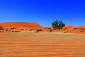 納米比亞紅色沙漠-1200公尺世界最高的-就在死亡谷上方:IMG_6979.jpg