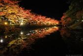 日本北關東東北行-8弘前城-櫻花紅葉園區驚豔楓紅.....:A81Q0695.JPG