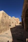 19-6敘利亞Syria-阿雷波ALEPPO_阿雷波古城堡(The Citadel):IMG_5986敘利亞Syria-阿雷波ALEPPO_阿雷波古城堡(The Citadel).jpg