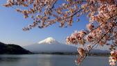 日本12天賞紫藤...VIP團之旅34-2 富士山我看清楚了你...:DSC00277.JPG