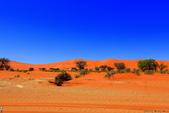 納米比亞紅色沙漠-1200公尺世界最高的-就在死亡谷上方:IMG_6985.jpg