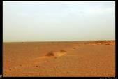 摩洛哥-北非撒哈拉沙漠巡禮(西葡摩31天深度之旅):IMG_6588H.jpg