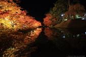 日本北關東東北行-8弘前城-櫻花紅葉園區驚豔楓紅.....:A81Q0689.JPG