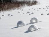 奇特的雪景:圖片16.jpg