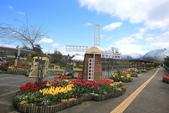 日本關西賞櫻深度之旅-鳥取花迴廊42-8:A81Q1630.JPG