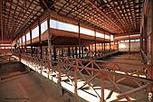 19-17塞普路斯-帕佛斯PAROS-考古遺跡區域UNESCO 1980年-海神之家:IMG_4271塞普路斯-拉那卡-PAROS考古遺跡區域UNESCO-酒神之家HOUSE OF DIONYSUS.jpg