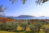日本四國人文藝術+楓紅深度之旅-小豆島橄欖公園53-36:A81Q0310.JPG