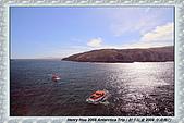 南極行_福克蘭群島-西點FALKLAND ISLANDS:_MG_7542福克蘭群島西點-FALKLAND ISLANDS WEST POINT.JPG