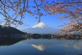 日本12天賞紫藤...VIP團之旅34-2 富士山我看清楚了你...:A81Q6219.JPG
