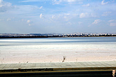 19-1塞普路斯 CYPRUS-拉那卡LARNACA-街景:IMG_3146塞普路斯 CYPRUS-鹽湖.jpg