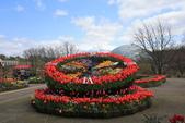 日本關西賞櫻深度之旅-鳥取花迴廊42-8:A81Q1623.JPG