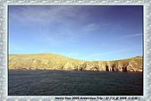 南極行_福克蘭群島-西點FALKLAND ISLANDS:_MG_7545福克蘭群島西點-FALKLAND ISLANDS WEST POINT.JPG
