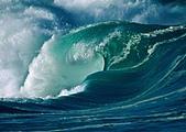 夏威夷全景 :圖片6.jpg