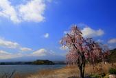 日本12天賞紫藤...VIP團之旅34-2 富士山我看清楚了你...:A81Q6307.JPG