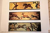 19-17塞普路斯-帕佛斯PAROS-考古遺跡區域UNESCO 1980年-海神之家:IMG_4254塞普路斯-拉那卡-PAROS考古遺跡區域UNESCO-酒神之家HOUSE OF DIONYSUS.jpg