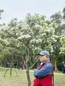 杜鵑花展在大安森林公園:20210304_153132-uid-55C484A8-2AA4-4984-A873-9C0BE99060F6-10008000.jpg