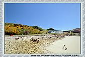 南極行_福克蘭群島-西點FALKLAND ISLANDS:_MG_7549福克蘭群島西點-FALKLAND ISLANDS WEST POINT.JPG