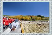 南極行_福克蘭群島-西點FALKLAND ISLANDS:_MG_7550福克蘭群島西點-FALKLAND ISLANDS WEST POINT.JPG