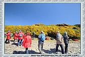 南極行_福克蘭群島-西點FALKLAND ISLANDS:_MG_7551福克蘭群島西點-FALKLAND ISLANDS WEST POINT.JPG
