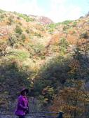 日本四國人文藝術+楓紅深度之旅-別府峽楓葉散策53-23:IMG_5475.JPG