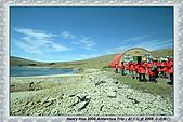 南極行_福克蘭群島-西點FALKLAND ISLANDS:_MG_7553福克蘭群島西點-FALKLAND ISLANDS WEST POINT.JPG