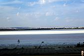 19-1塞普路斯 CYPRUS-拉那卡LARNACA-街景:IMG_3149塞普路斯 CYPRUS-鹽湖.jpg