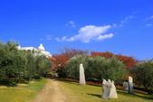 日本四國人文藝術+楓紅深度之旅-小豆島橄欖公園53-36:A81Q0317.JPG