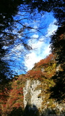 日本四國人文藝術+楓紅深度之旅-別府峽楓葉散策53-23:IMG_6217.JPG
