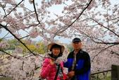 日本九州春櫻尊爵全覽之旅-1_福岡市舞鶴公園-綻放春櫻:A81Q5659.JPG