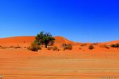 納米比亞紅色沙漠-1200公尺世界最高的-就在死亡谷上方:IMG_6980.jpg