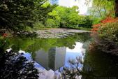 日本北海道美景+美食樂悠遊優質行程系列62-60_北海道舊道廳-位於札幌市中心: