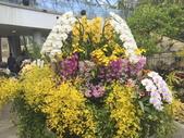 日本關西賞櫻深度之旅-鳥取花迴廊42-8:IMG_2400.JPG