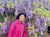 紫藤咖啡園-淡水二店:20210322_184848-uid-4C9CD138-F069-48E2-B411-D8DE304C02DC-637584.jpg