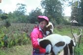 美女們被狐猴溫馨親切有禮的親親_在馬達加斯加-狐猴島Lemur Island:IMG_0362.jpg